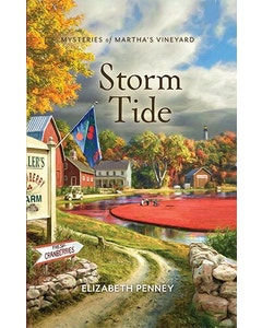 Storm Tide Book Cover