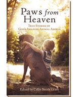 Paws from Heaven: True Stories of God's Amazing Animal Angels