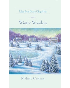 Winter Wonders Book Cover