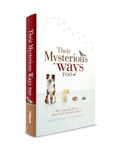 Their Mysterious Ways Too Side Cover