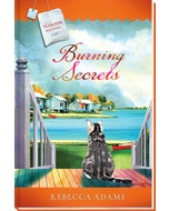 Burning Secrets Book Cover