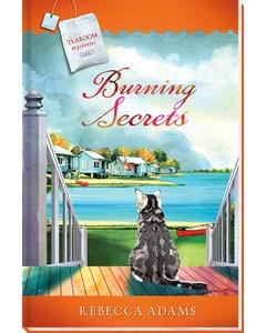Burning Secrets Book Cover