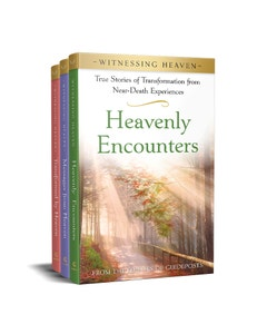 Witnessing Heaven - Join the Series