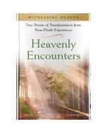 Witnessing Heaven Book 1: Heavenly Encounters