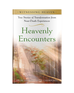 Witnessing Heaven Book 1: Heavenly Encounters