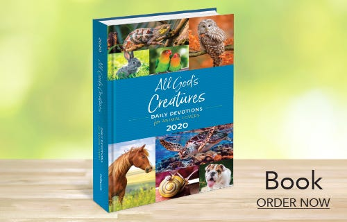 All God's Creatures Book 2020