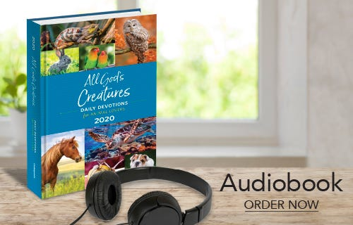 All God's Creatures 2020 Audiobook